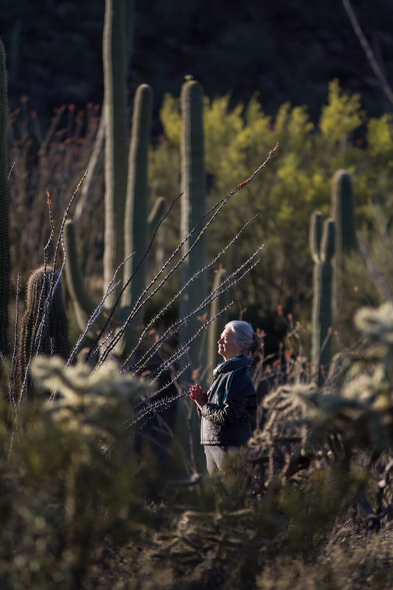 A woman greets the sunset during a Standing with Saguaros community event and year-long program, funded in part by the National Endowment for the Arts.